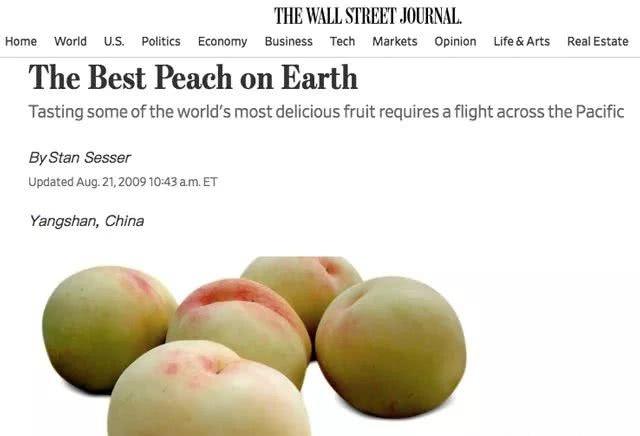 阳山水蜜桃被《华尔街日报》誉为地球上最好吃的桃子